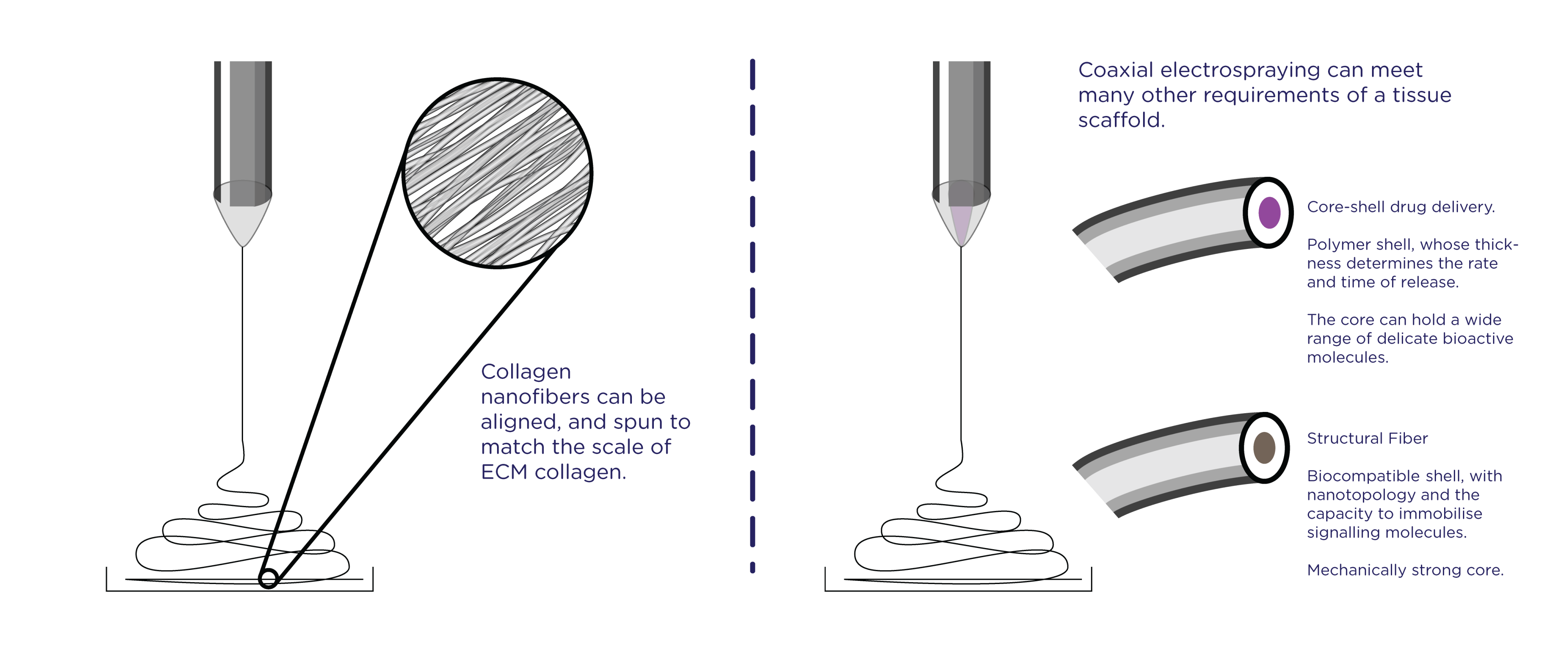(A): Nanofibrous mats vs ECM. (B): Coaxial electrospinning for drug delivery, and for extra-strong biocompatible fibers.