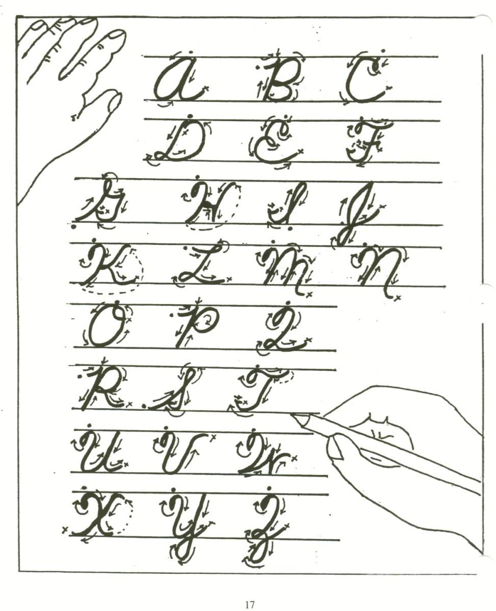Английский алфавит для детей в рисунках